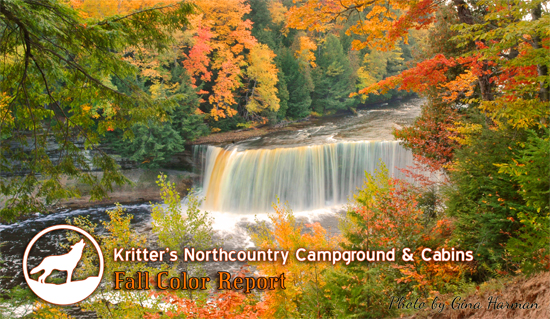Newberry, MI Fall Color Report | UP Fall Color Report | Upper Peninsula Fall Color Report