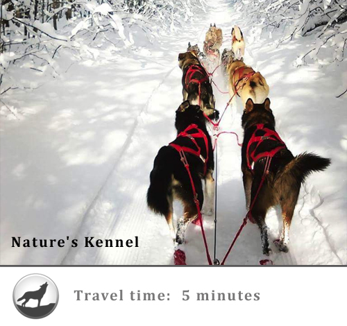 Nature S Kennel Michigan